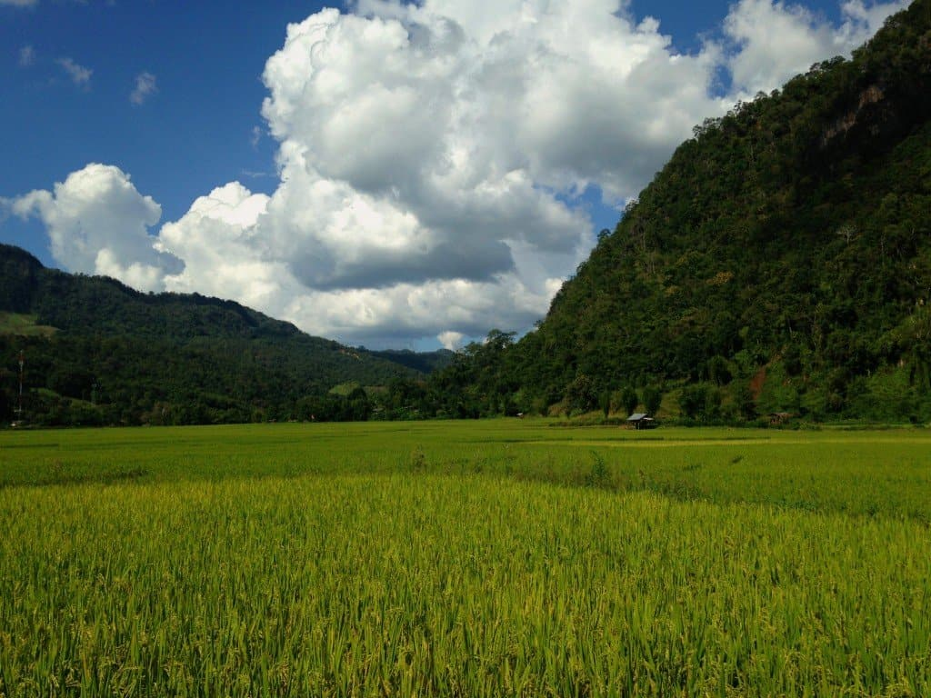 Trekking in Northern Thailand (How to Get Off the Beaten Track)