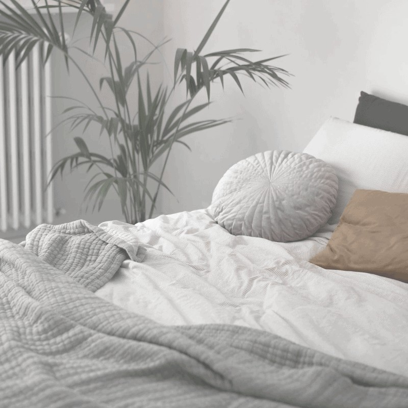 A plant and an unmade bed with decorative pillows and blankets on it.