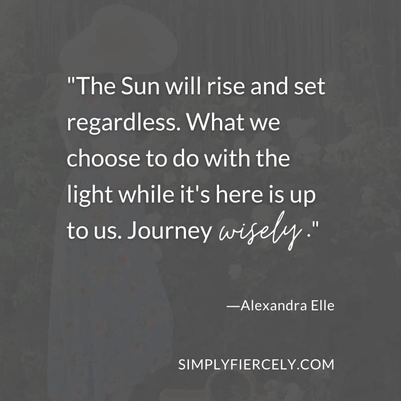 The Sun will rise and set regardless. What we choose to do with the light while it's here is up to us. Journey wisely. - Alexandra Elle