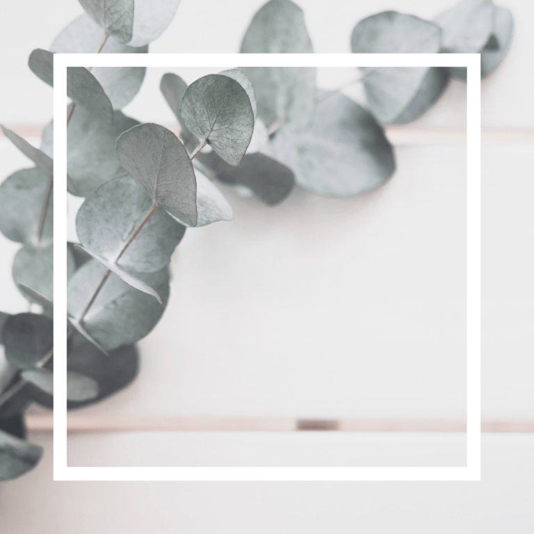 A eucalyptus branch against a white wooden background with a white square frame overlay